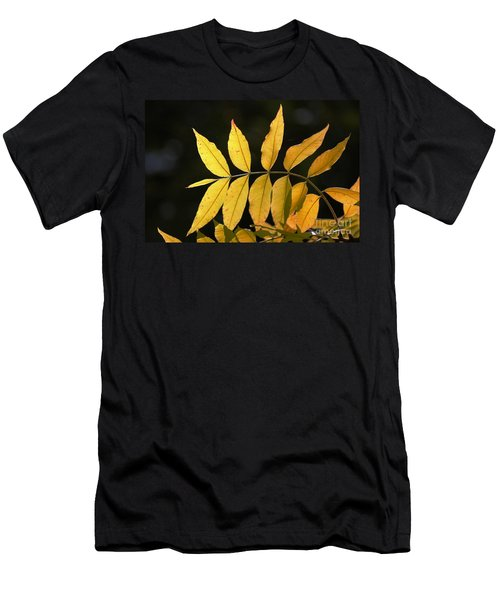 Leaves Of Fall Men's T-Shirt (Athletic Fit)