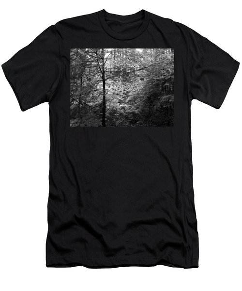 Light In The Woods Men's T-Shirt (Athletic Fit)