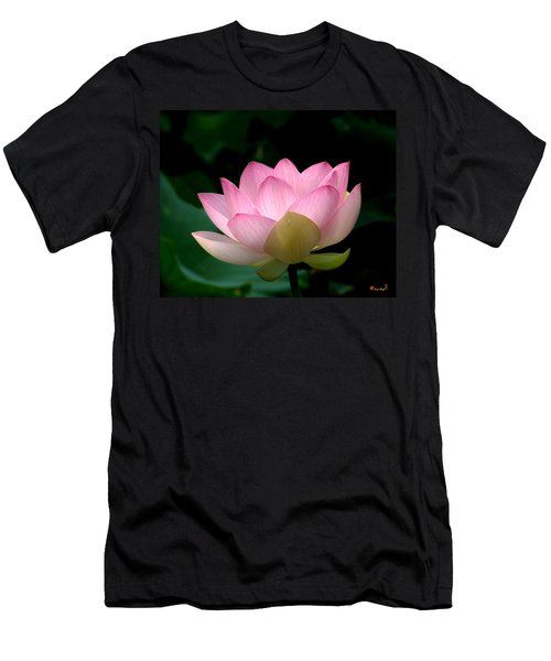 Lotus Beauty--blushing Dl003 Men's T-Shirt (Athletic Fit)