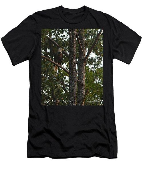 Majestic Bald Eagle Men's T-Shirt (Athletic Fit)