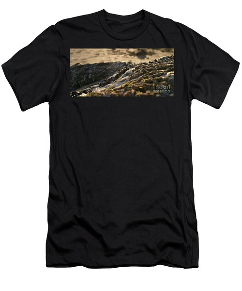 Mussels Sunset Men's T-Shirt (Athletic Fit)