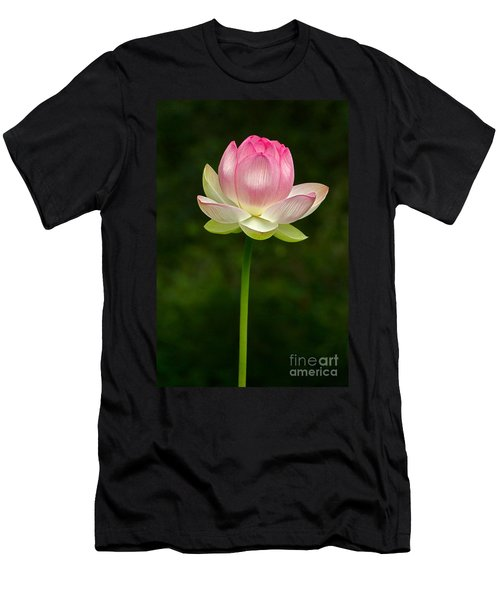 Men's T-Shirt (Athletic Fit) featuring the photograph No Less Magical by Byron Varvarigos