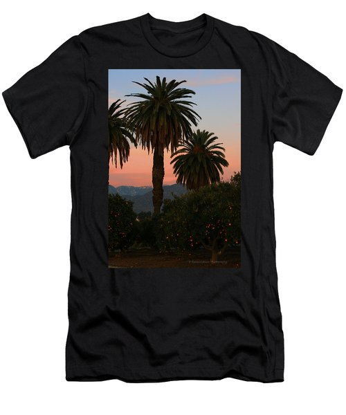 Palm Trees And Orange Trees Men's T-Shirt (Slim Fit) by Dorothy Cunningham