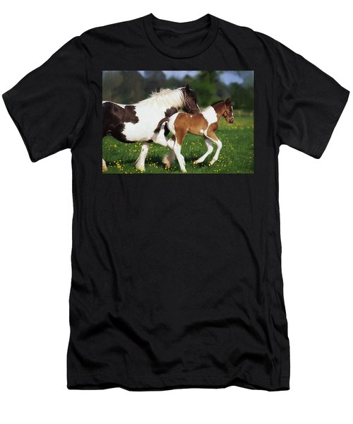 Piebald Mare And Foal Men's T-Shirt (Athletic Fit)