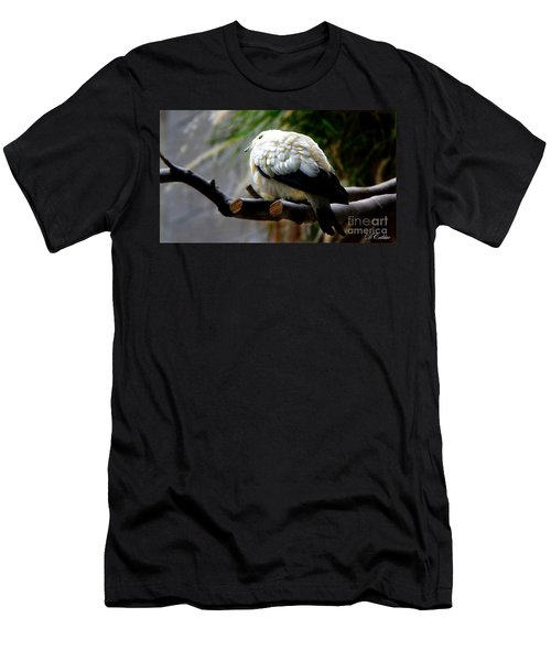 Men's T-Shirt (Slim Fit) featuring the photograph Pied Imperial Pigeon by Davandra Cribbie