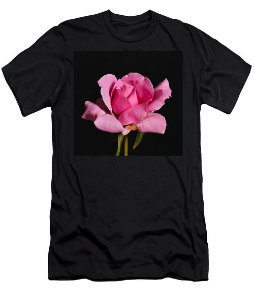 Pink Tea Rose Men's T-Shirt (Athletic Fit)