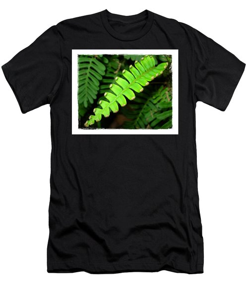 Men's T-Shirt (Slim Fit) featuring the photograph Polypody by Judi Bagwell