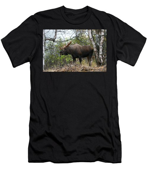 Men's T-Shirt (Slim Fit) featuring the photograph Poser by Doug Lloyd