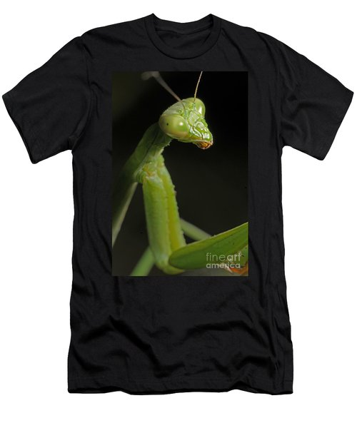 Praying Mantis Men's T-Shirt (Athletic Fit)