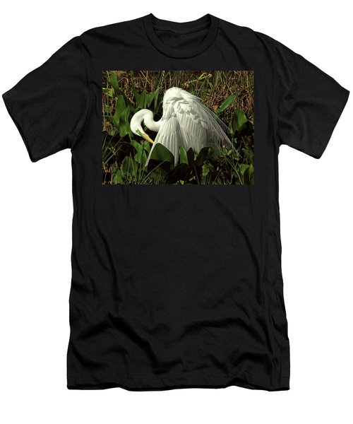 Preening Egret Men's T-Shirt (Athletic Fit)