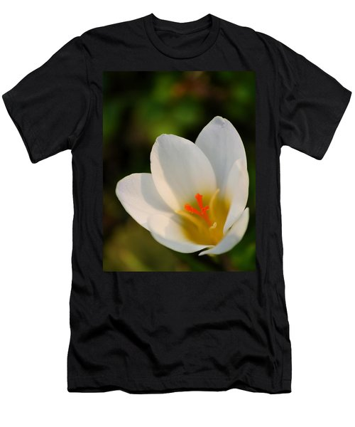Pretty White Crocus Men's T-Shirt (Athletic Fit)