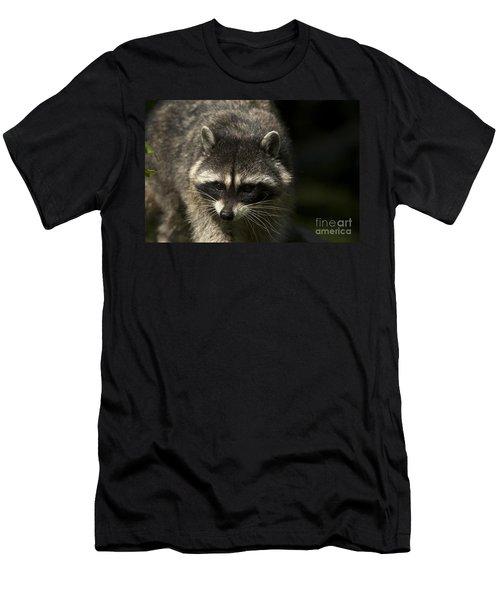 Raccoon 2 Men's T-Shirt (Athletic Fit)