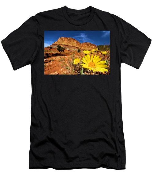 Rainbow Garden Men's T-Shirt (Athletic Fit)