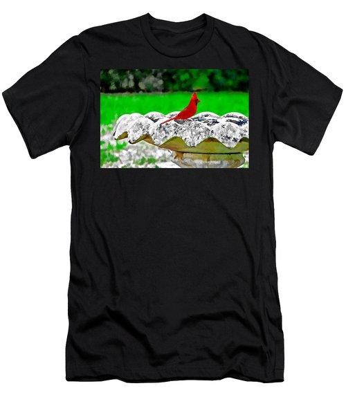 Red Bird In Bath Men's T-Shirt (Slim Fit) by Tom Culver