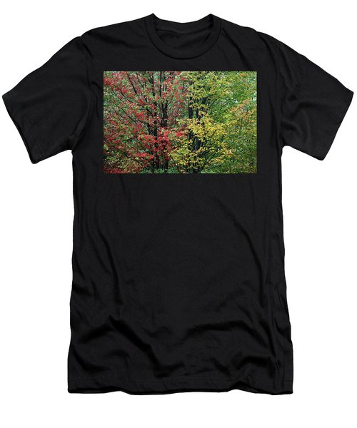 Red Yellow And Green Leaves Men's T-Shirt (Athletic Fit)