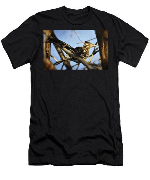 Roadrunner Up A Tree Men's T-Shirt (Slim Fit) by Saija  Lehtonen