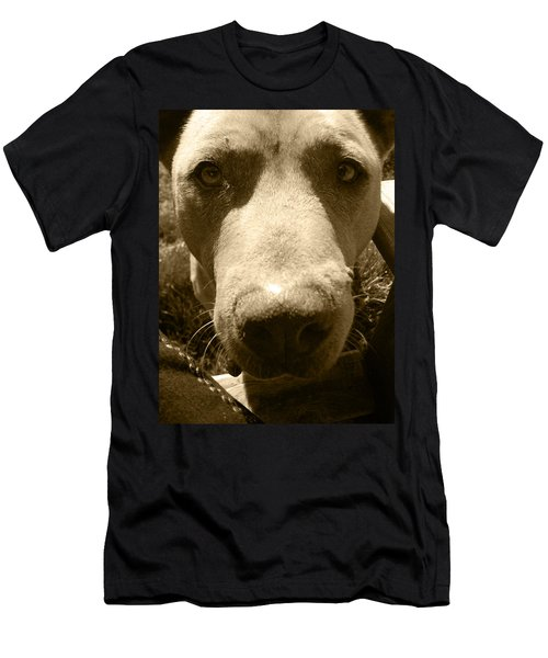 Men's T-Shirt (Slim Fit) featuring the photograph Roscoe Pitbull Eyes by Kym Backland