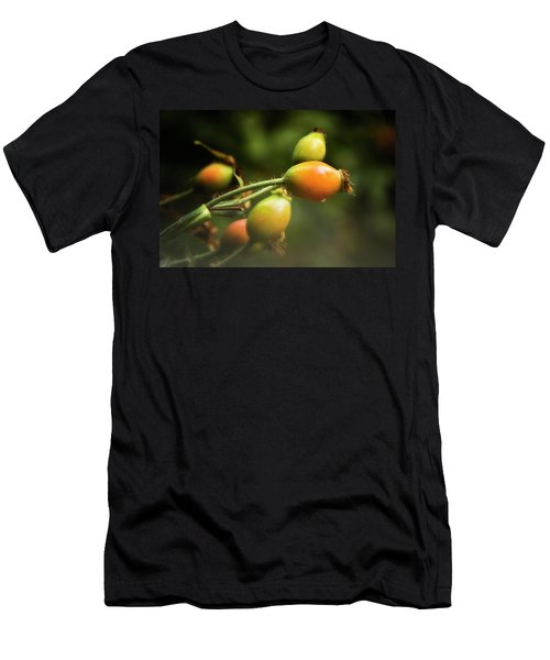Rose Hips Men's T-Shirt (Slim Fit) by Albert Seger