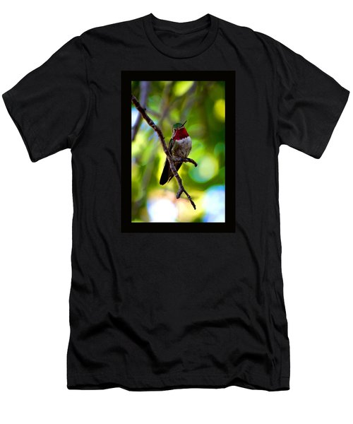 Ruby Throated Hummingbird Men's T-Shirt (Slim Fit) by Susanne Still