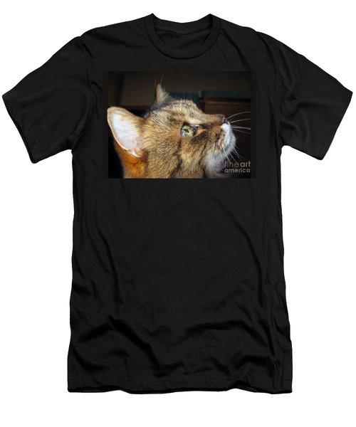 Men's T-Shirt (Athletic Fit) featuring the photograph Runcius- The King Kitty by Ausra Huntington nee Paulauskaite