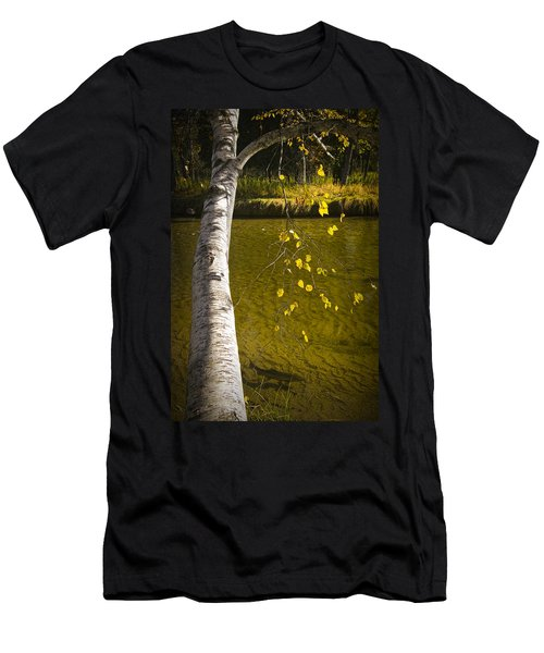 Salmon During The Fall Migration In The Little Manistee River In Michigan No. 0887 Men's T-Shirt (Athletic Fit)