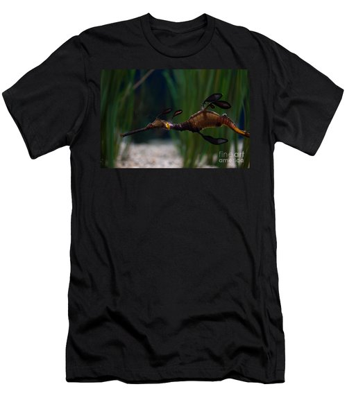 Sea Dragons Men's T-Shirt (Athletic Fit)