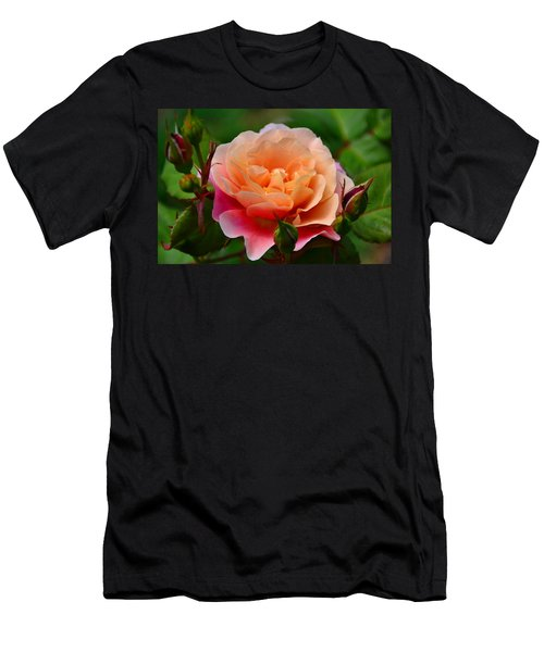 Sherbet Rose Men's T-Shirt (Athletic Fit)