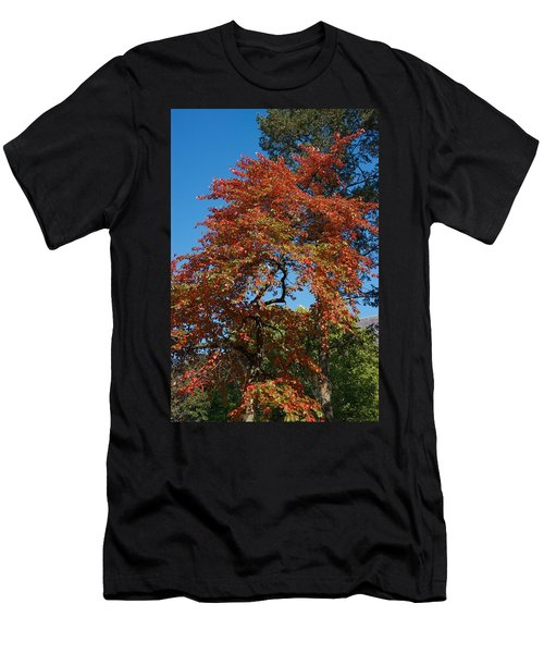 Men's T-Shirt (Slim Fit) featuring the photograph Soaring Fall by Joseph Yarbrough