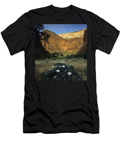 Spring At Big Bend Men's T-Shirt (Athletic Fit)
