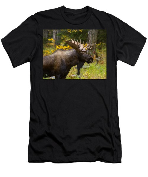 Men's T-Shirt (Slim Fit) featuring the photograph Standing Proud by Doug Lloyd