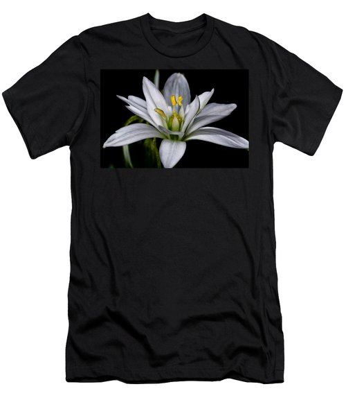 Star Of Bethlehem Men's T-Shirt (Athletic Fit)