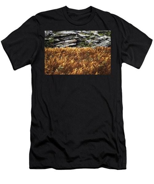 Stone Wall And Fern Men's T-Shirt (Athletic Fit)