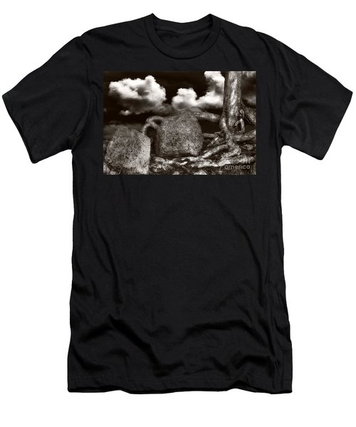 Stones And Roots Men's T-Shirt (Athletic Fit)