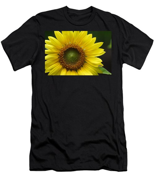 Sunflower With Insect Men's T-Shirt (Athletic Fit)