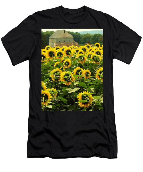Tall Sunflowers Men's T-Shirt (Athletic Fit)