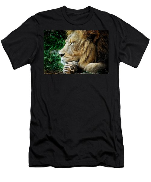 The Lions Sleeps Men's T-Shirt (Athletic Fit)