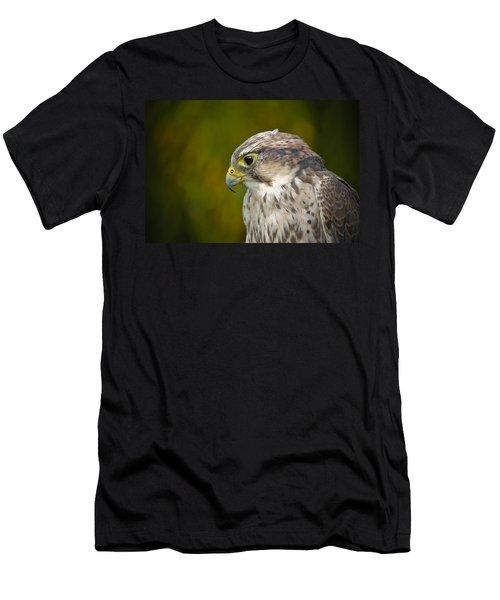 Thoughtful Kestrel Men's T-Shirt (Athletic Fit)
