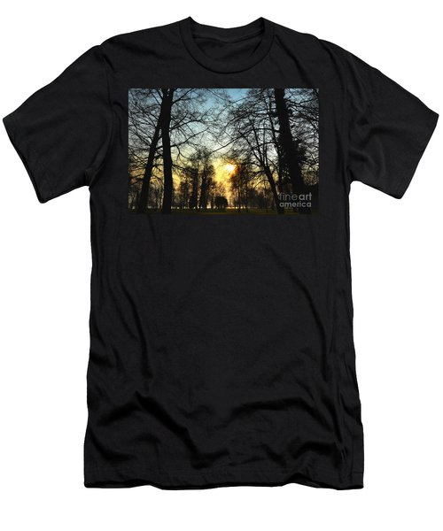 Trees And Sun In A Foggy Day Men's T-Shirt (Athletic Fit)