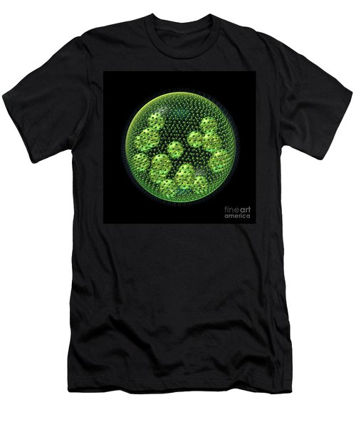 Men's T-Shirt (Slim Fit) featuring the digital art Volvox by Russell Kightley
