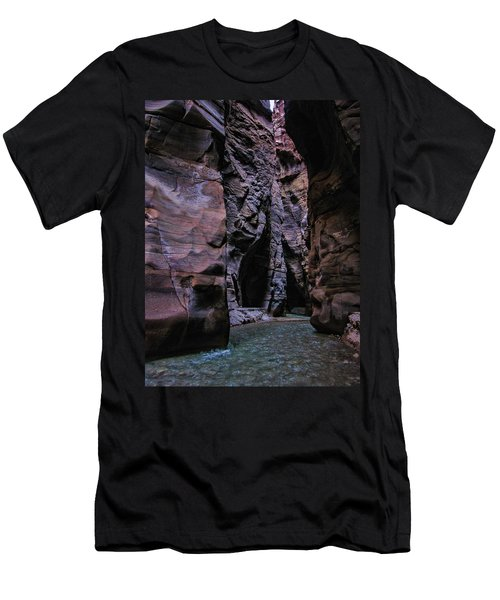 Wadi Mujib Jordan Men's T-Shirt (Slim Fit) by David Gleeson