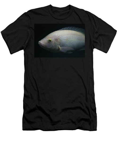 White Tilapia With Yellow Eyes Men's T-Shirt (Athletic Fit)
