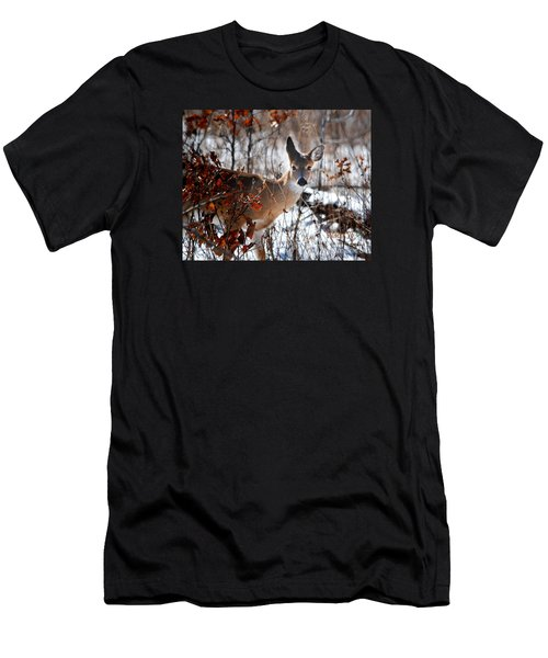 Whitetail Deer In Snow Men's T-Shirt (Athletic Fit)