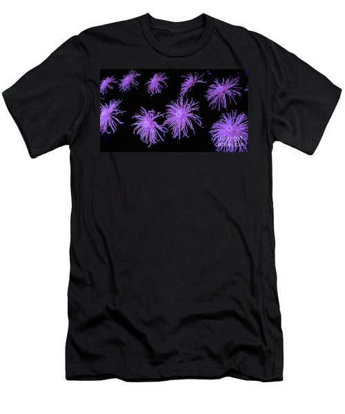 Chrysanthemums In Purple Men's T-Shirt (Athletic Fit)