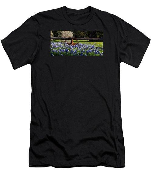 Texas Bluebonnets IIi Men's T-Shirt (Slim Fit) by Greg Reed