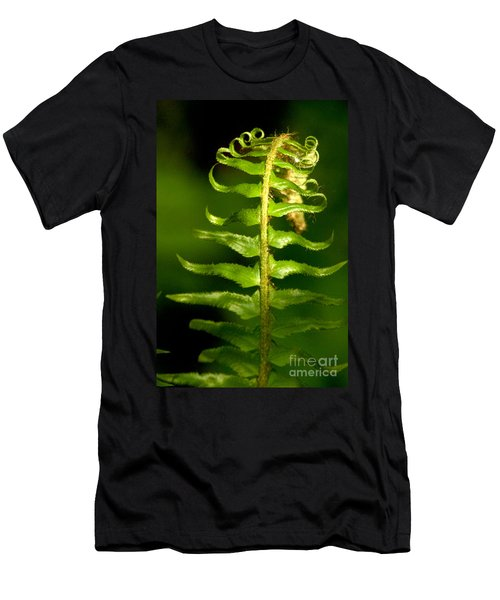 A Light In The Forest Men's T-Shirt (Slim Fit) by Sean Griffin