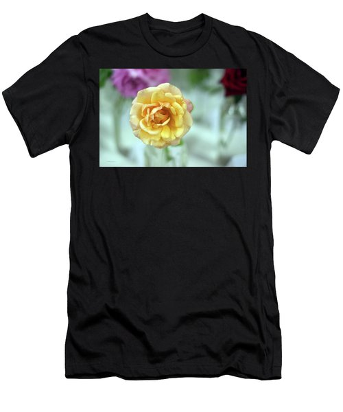 A Rose Is A Rose Men's T-Shirt (Athletic Fit)