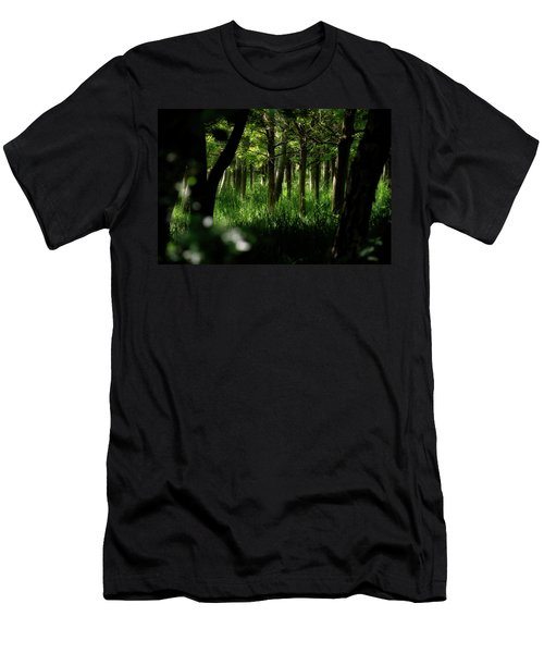 A Walk In The Woods Men's T-Shirt (Athletic Fit)