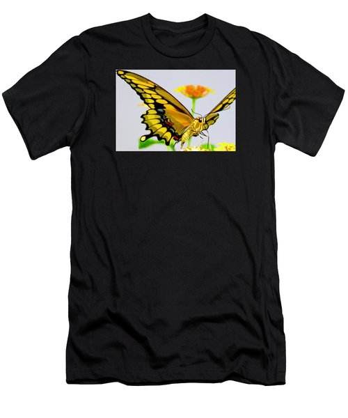 Afternoon Sip Men's T-Shirt (Athletic Fit)