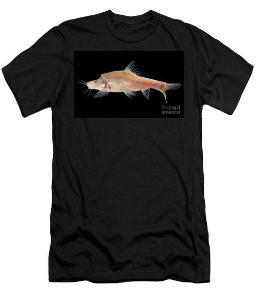 Angled Golden Line Barbel Men's T-Shirt (Athletic Fit)