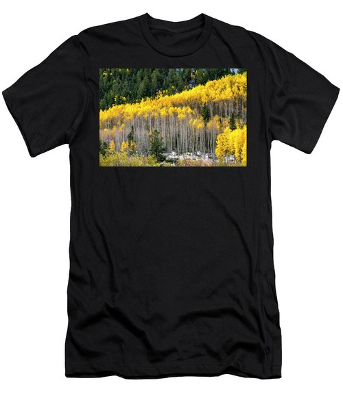 Aspen Trees In Fall Color Men's T-Shirt (Athletic Fit)